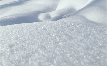 Snow, Close up.